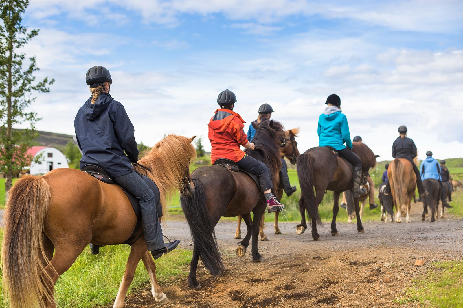 Til hest på Island